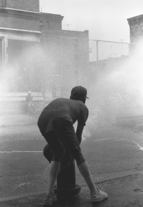 """Fire Hydrant"" - Stanley Horowitz"